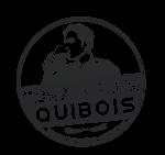 Logo gris sans aucun fond_rvb